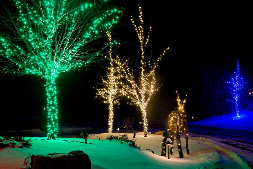 christmas lights always seems to bring out the grinch in all of us lucky for you our business offers christmas light installation idaho falls families